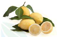 limoni_IGP